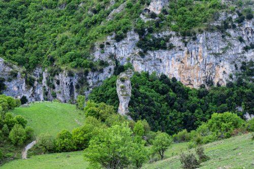 Hotova Fir National